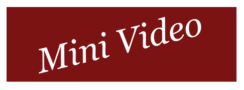 TagMiniVideo